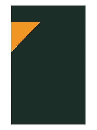 toa_logo_v2
